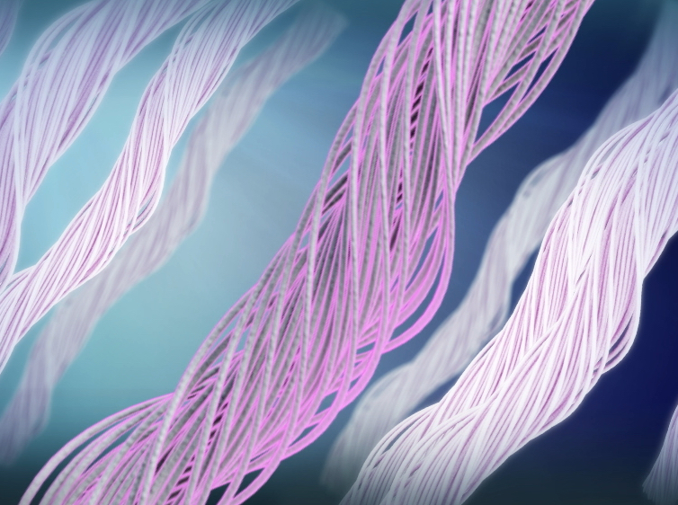 3D fibres animation